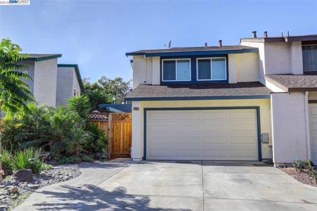 37933 Essanay Pl, Fremont, CA 94536 (#BE40837643) :: The Kulda Real Estate Group
