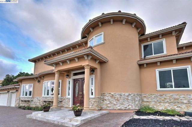 44631 Highland Pl, Fremont, CA 94539 (#BE40838004) :: The Kulda Real Estate Group