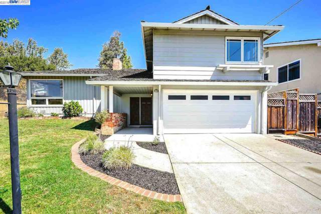 17842 Carmel Drive, Castro Valley, CA 94546 (#BE40838023) :: Strock Real Estate