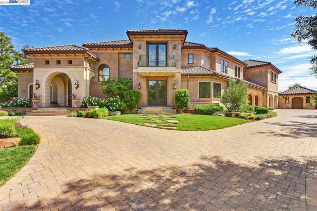 1850 Spumante Pl, Pleasanton, CA 94566 (#BE40839413) :: The Kulda Real Estate Group