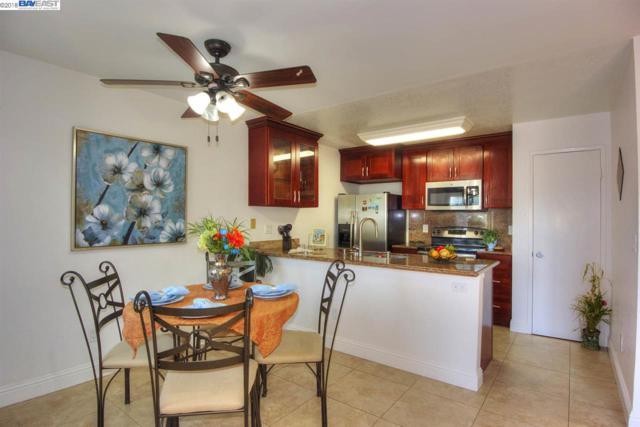 205 Shaniko Cmn, Fremont, CA 94539 (#BE40840239) :: The Kulda Real Estate Group