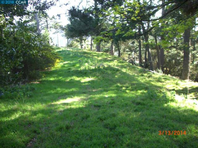 6060 Grizzly Peak Blvd, Oakland, CA 94611 (#CC40841040) :: Julie Davis Sells Homes
