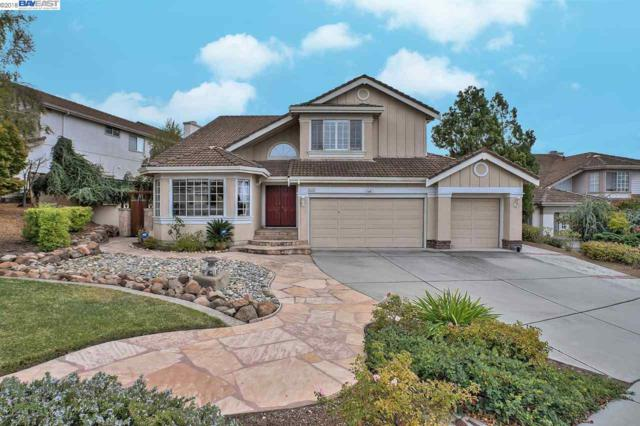 45316 Whitetail Ct, Fremont, CA 94539 (#BE40841091) :: Strock Real Estate