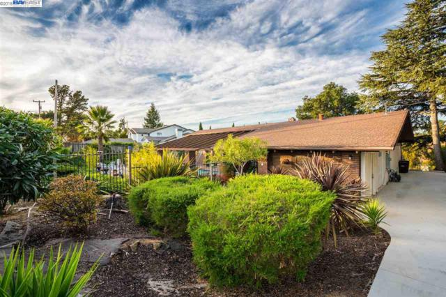 3850 Arbutus Ct, Hayward, CA 94542 (#BE40844759) :: The Warfel Gardin Group