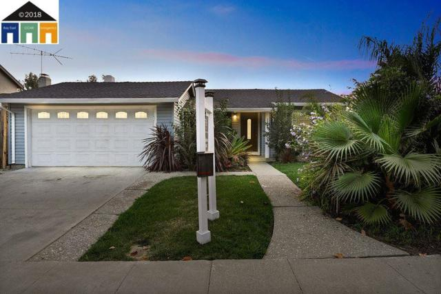 3228 San Carvante Way, Union City, CA 94587 (#MR40846634) :: Brett Jennings Real Estate Experts
