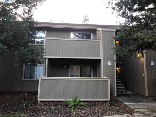 37346 Spruce Ter, Fremont, CA 94536 (#BE40847019) :: The Gilmartin Group