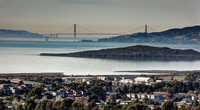1604 Roger Ct, El Cerrito, CA 94530 (#MR40849946) :: Brett Jennings Real Estate Experts