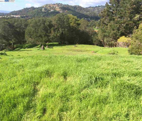 4391 Briar Cliff Rd, Oakland, CA 94605 (#BE40850813) :: The Goss Real Estate Group, Keller Williams Bay Area Estates