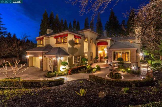 3436 Deer Ridge Drive, Danville, CA 94506 (#CC40852355) :: The Kulda Real Estate Group