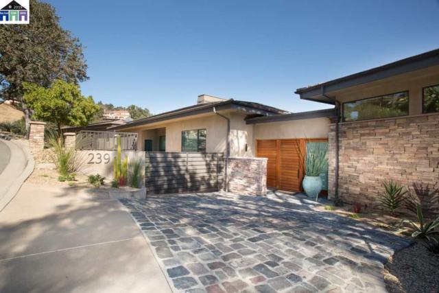239 Michelle Ln, Alamo, CA 94507 (#MR40853626) :: Strock Real Estate