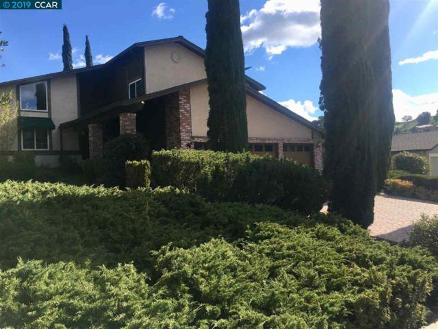 292 Davey Crockett Ct, Alamo, CA 94507 (#CC40857933) :: The Goss Real Estate Group, Keller Williams Bay Area Estates