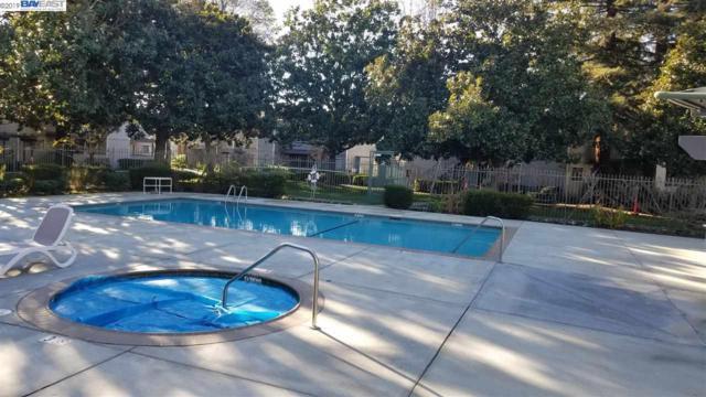 39784 Bissy Cmn, Fremont, CA 94538 (#BE40858038) :: Strock Real Estate