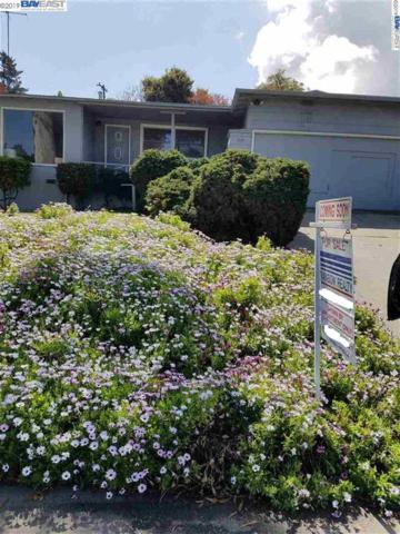 519 Madera Dr, San Mateo, CA 94403 (#BE40861919) :: Live Play Silicon Valley