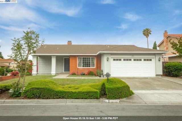 45437 Medicine Bow Way, Fremont, CA 94539 (#BE40865891) :: Strock Real Estate