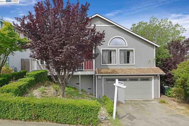 23001 Lakeridge Ave, Hayward, CA 94541 (#BE40866086) :: Strock Real Estate