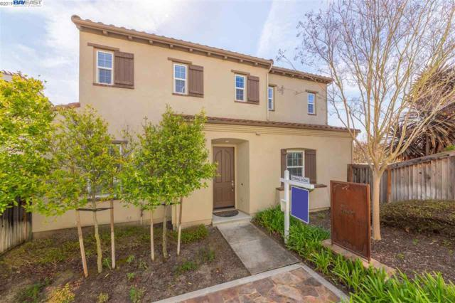 2322 Maidenhair Way, San Ramon, CA 94582 (#BE40866209) :: Strock Real Estate