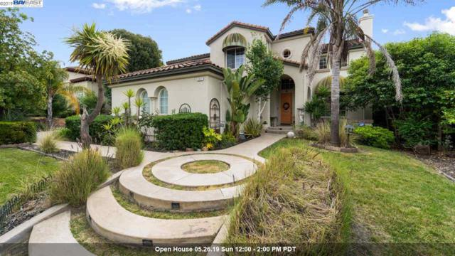 591 Upper Vintners Circle, Fremont, CA 94539 (#BE40867195) :: Live Play Silicon Valley