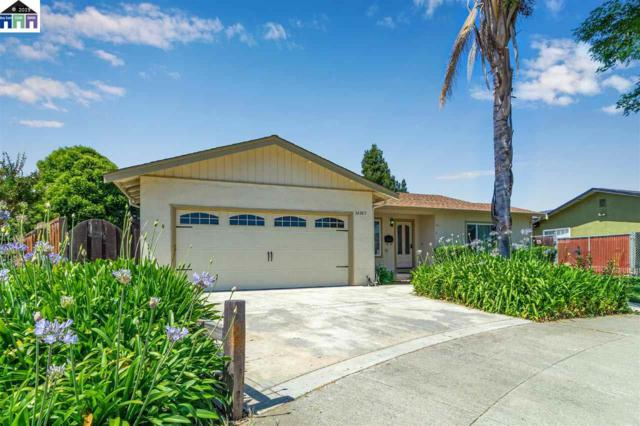 36365 Shorehaven Place, Newark, CA 94560 (#MR40869553) :: Strock Real Estate