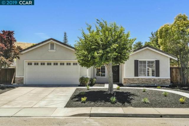 1880 Badger Pass Way, Antioch, CA 94531 (#CC40874164) :: Strock Real Estate