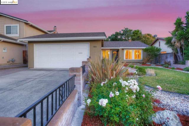 486 Fontanelle Ct, San Jose, CA 95111 (#EB40874826) :: The Kulda Real Estate Group