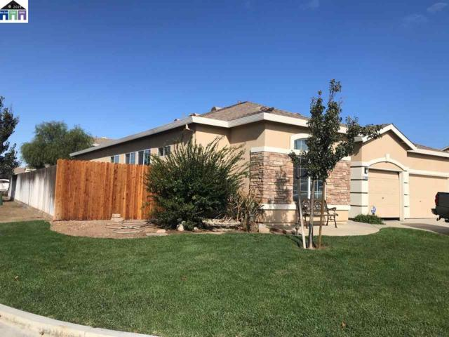 29462 Sonora Dr, Santa Nella, CA 95322 (#MR40874859) :: Strock Real Estate