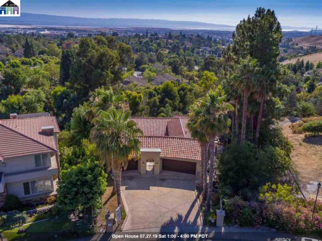 45630 Montclaire Ter, Fremont, CA 94539 (#MR40875479) :: RE/MAX Real Estate Services