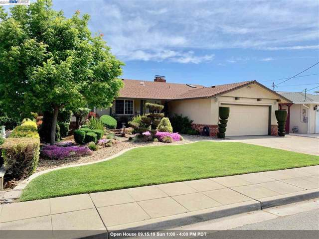 362 El Caminito, Livermore, CA 94550 (#BE40882219) :: Strock Real Estate