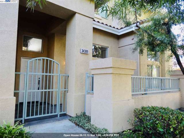 34389 Anzio Ter, Fremont, CA 94555 (#BE40882276) :: The Realty Society