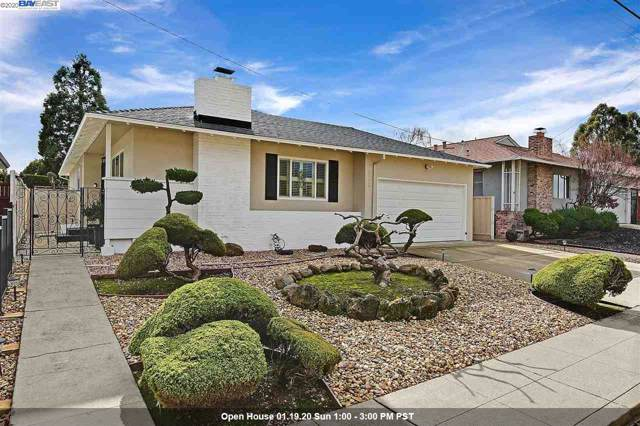 3013 Greenview Drive, Castro Valley, CA 94546 (#BE40892270) :: Live Play Silicon Valley