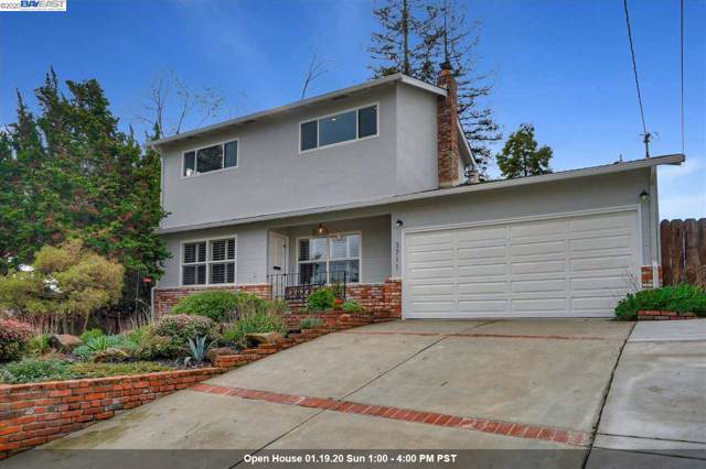3711 Cottage Ct, Castro Valley, CA 94546 (#BE40892274) :: Live Play Silicon Valley