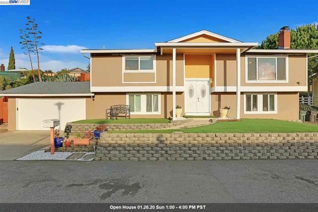 341 Monaco Avenue, Union City, CA 94587 (#BE40893019) :: The Goss Real Estate Group, Keller Williams Bay Area Estates
