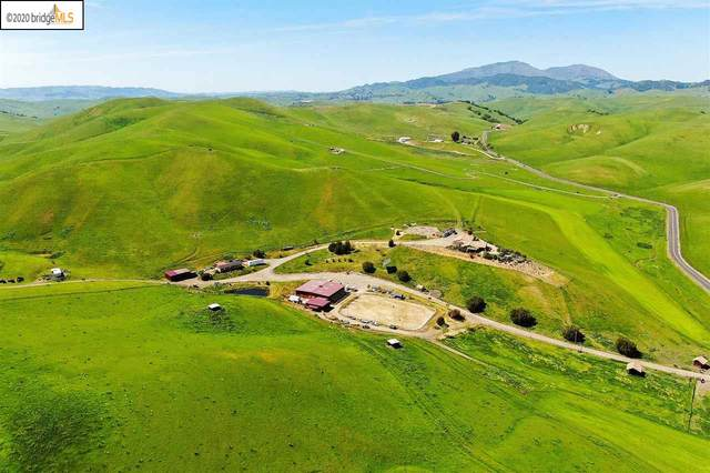 7400 Collier Canyon Rd, Livermore, CA 94551 (#EB40905011) :: The Realty Society