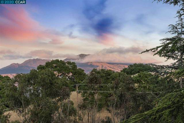 1514 Rancho View Drive, Lafayette, CA 94549 (#CC40905425) :: Strock Real Estate