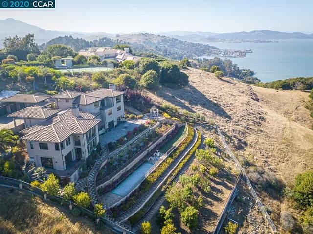 189 Gilmartin Dr., Tiburon, CA 94920 (#CC40917000) :: The Kulda Real Estate Group