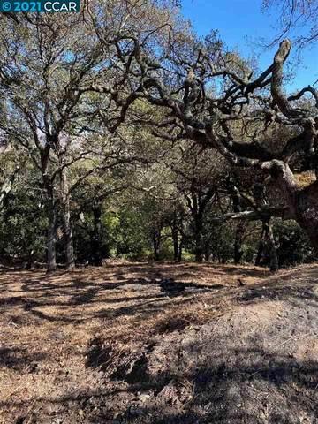 Turquoise Dr, Hercules, CA 94547 (#CC40920958) :: Schneider Estates