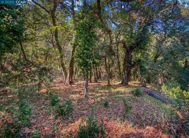 Camino Del Monte, Orinda, CA 94563 (#CC40921164) :: Schneider Estates