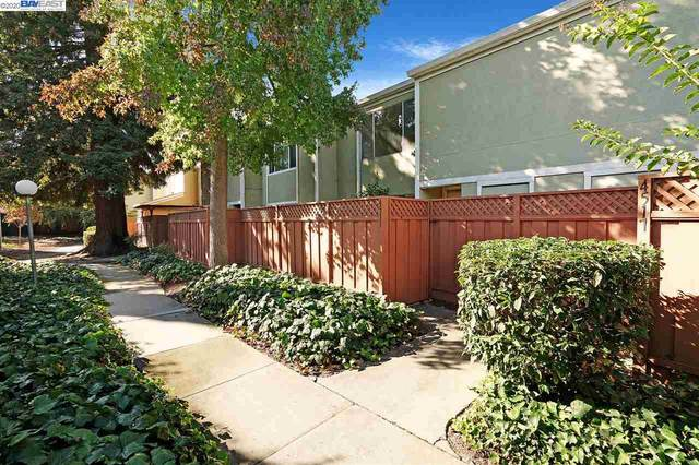 4513 Capewood Ter, Fremont, CA 94538 (#BE40925134) :: Intero Real Estate