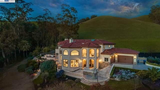 568 Monticello Ter, Fremont, CA 94539 (#BE40944026) :: Intero Real Estate
