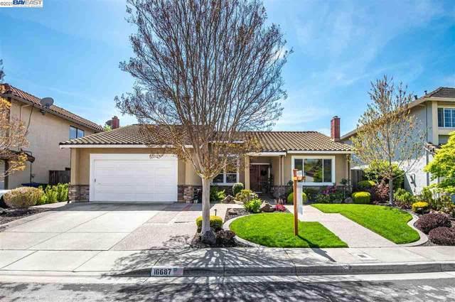 16687 Columbia Drive, Castro Valley, CA 94552 (#BE40945436) :: Intero Real Estate