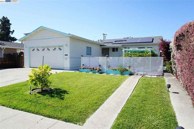 1157 Park Heights Dr, Milpitas, CA 95035 (#BE40948084) :: The Kulda Real Estate Group