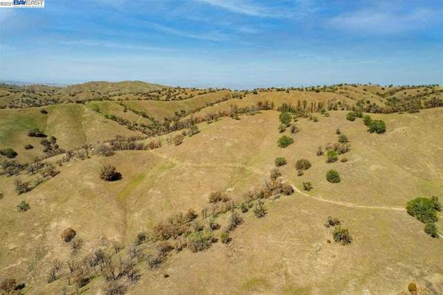 15170 W Corral Hollow Rd, Tracy, CA 95377 (#BE40951334) :: The Kulda Real Estate Group