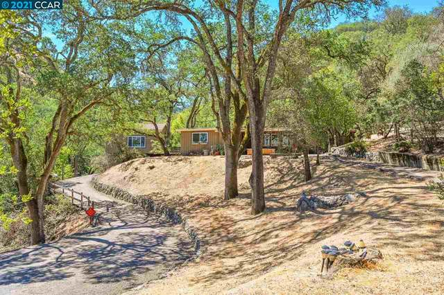 281 Castle Hill Ranch Rd, Walnut Creek, CA 94595 (#CC40954300) :: Paymon Real Estate Group