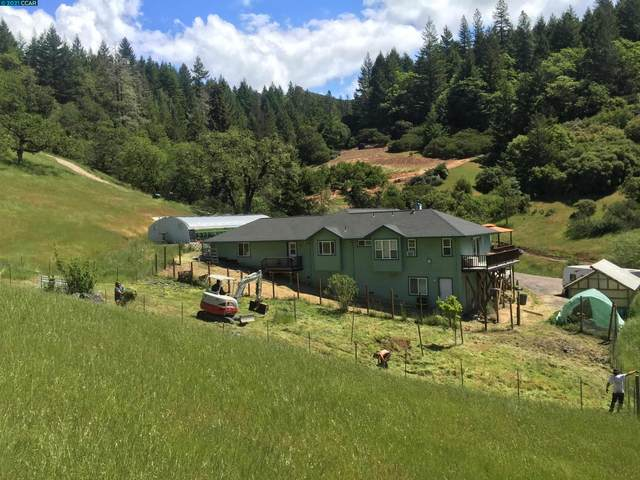 8800 Cave Creek Rd, REDWOOD VALLEY, CA 95470 (#CC40960673) :: The Kulda Real Estate Group