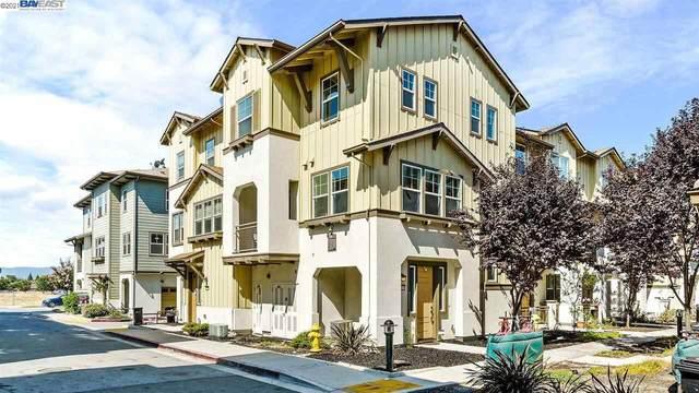 1115 Mallow Ter, San Jose, CA 95133 (#BE40960854) :: Strock Real Estate