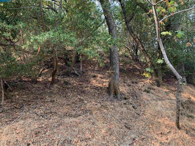0 Glenora Way, Sunol, CA 94586 (#CC40965101) :: Strock Real Estate