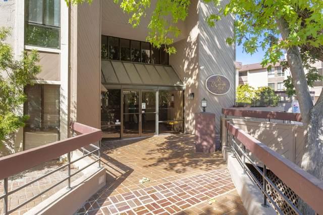 58 N El Camino Real 309, San Mateo, CA 94401 (#BE40970551) :: The Realty Society