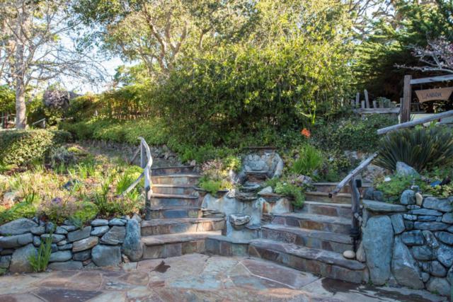 250 Hwy 1, Carmel, CA 93923 (#ML81700223) :: Brett Jennings Real Estate Experts