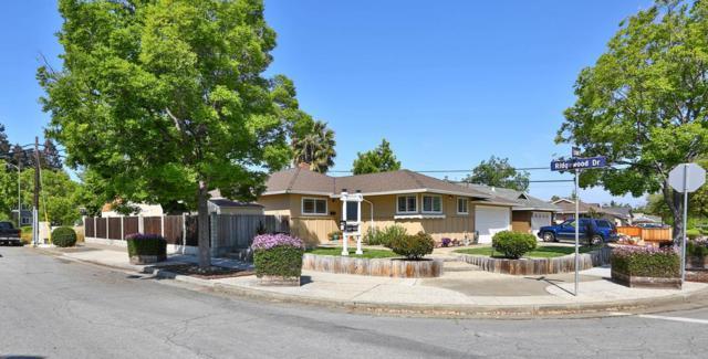 5391 Estrade Dr, San Jose, CA 95118 (#ML81701286) :: Brett Jennings Real Estate Experts