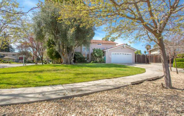 415 Avenida Del Roble, San Jose, CA 95123 (#ML81702348) :: Intero Real Estate