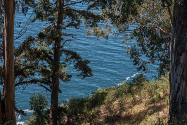 51400 Partington Ridge Rd, Big Sur, CA 93920 (#ML81703317) :: The Warfel Gardin Group